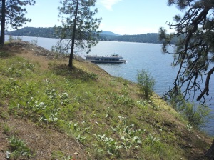Tour Boat on Lake Coeur d'Alene at Tubbs Hill