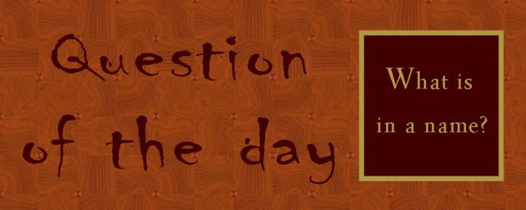 Question of the day9