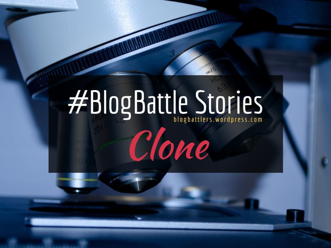 BB_Stories_Clone